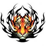 akTed avatar